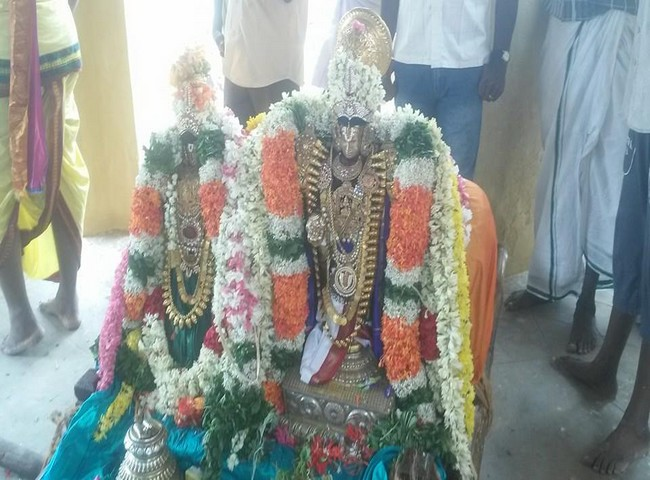Sri Oppilliappan Brahmothsavam Thiruther20