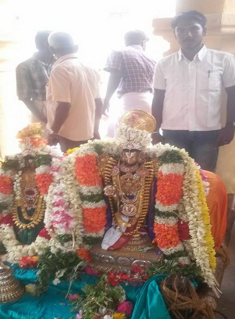 Sri Oppilliappan Brahmothsavam Thiruther8