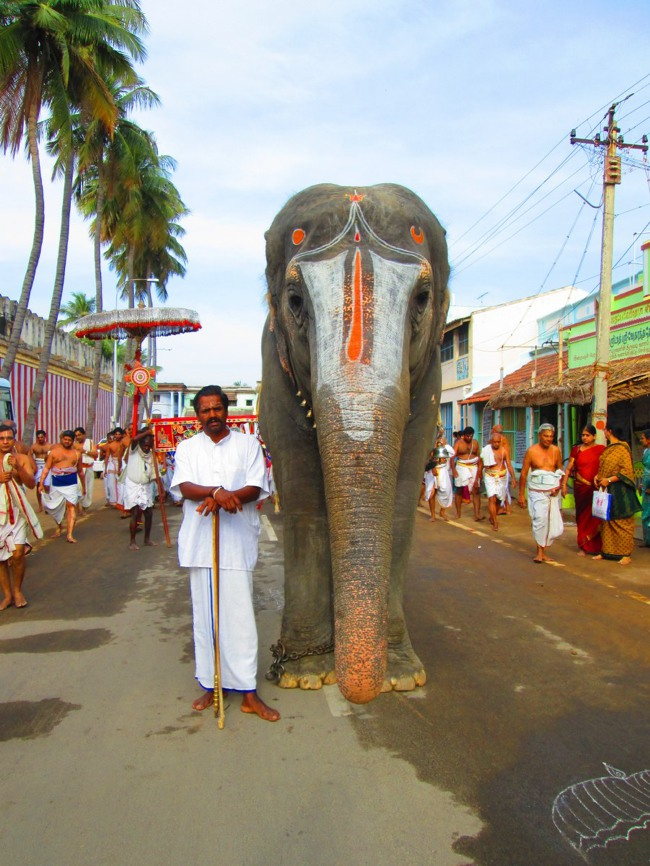 Srirangam Masi Theppotsavam Day 6 Morning 2014--05