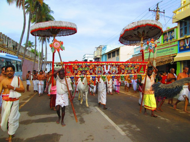 Srirangam Masi Theppotsavam Day 6 Morning 2014--06