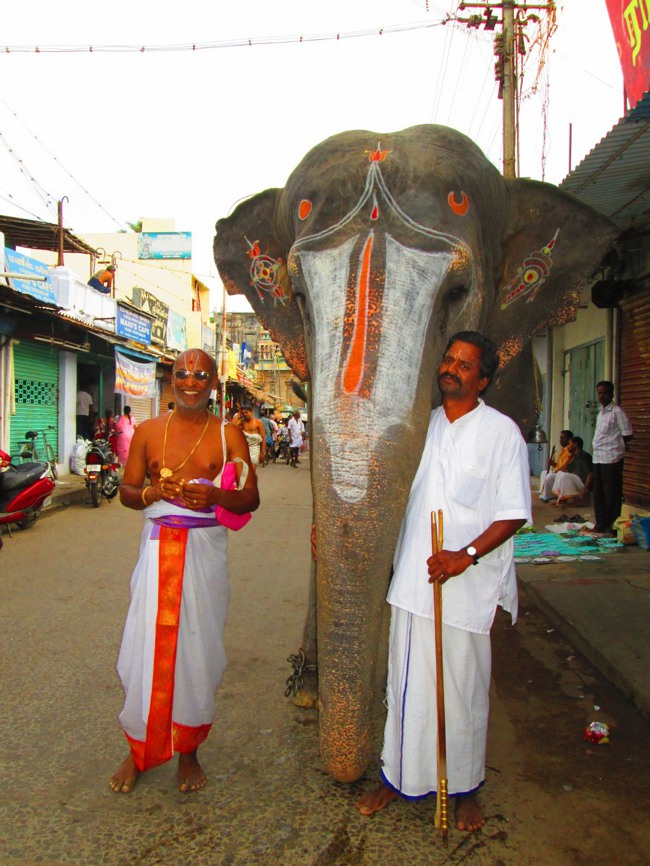Srirangam Masi Theppotsavam Day 6 Morning 2014--34