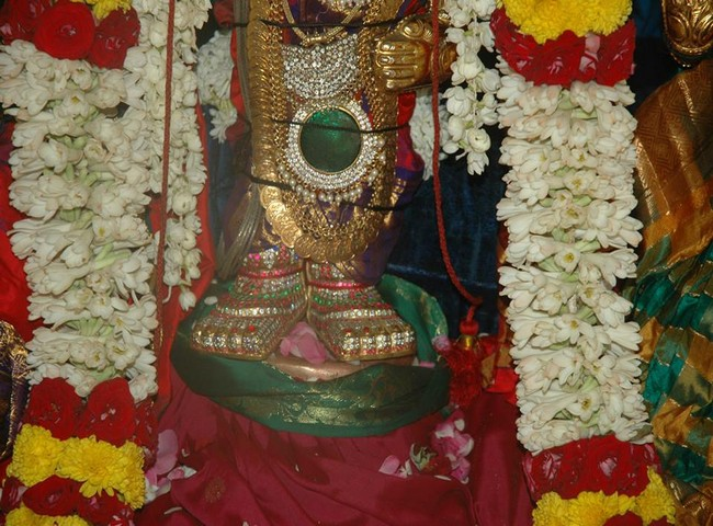 Thiruneermalai Brahmothsavam Thiruther8