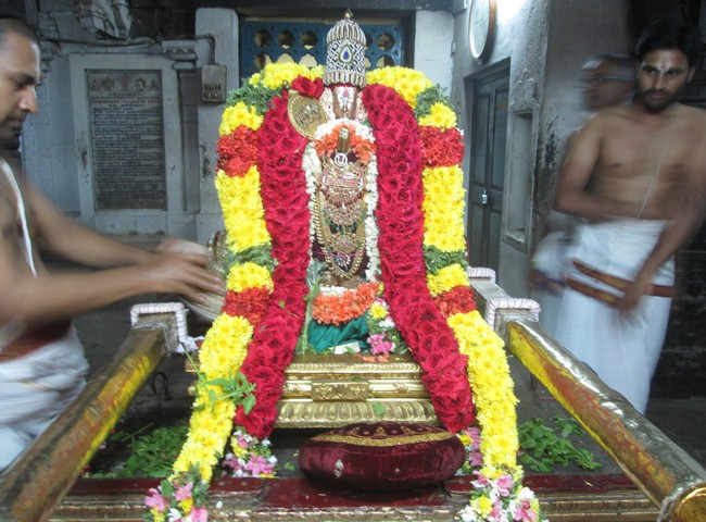 pooviruthavalli thirukachi nambigal thiru avathra uthsavam2day 1