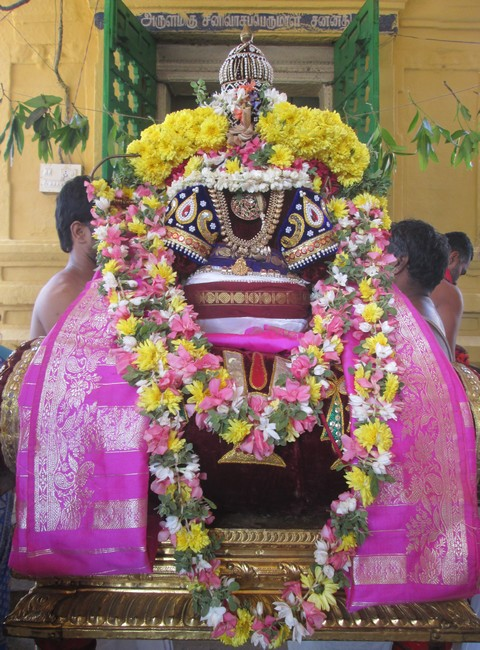 pooviruthavalli thirukachi nambigal thiru avathra uthsavam5day 1