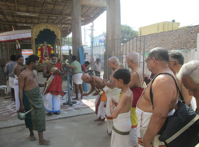 pooviruthavalli thirukachi nambigal thiru avathra uthsavam8day 1