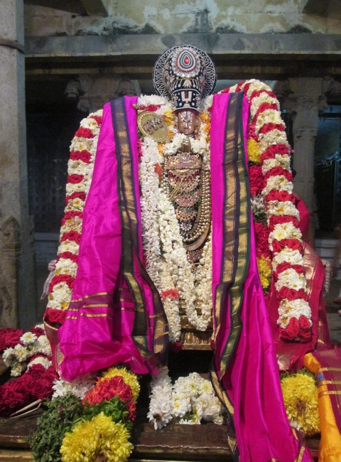 pooviruthavalli thirukachinambigal thiruavathara uthsavam day 1014