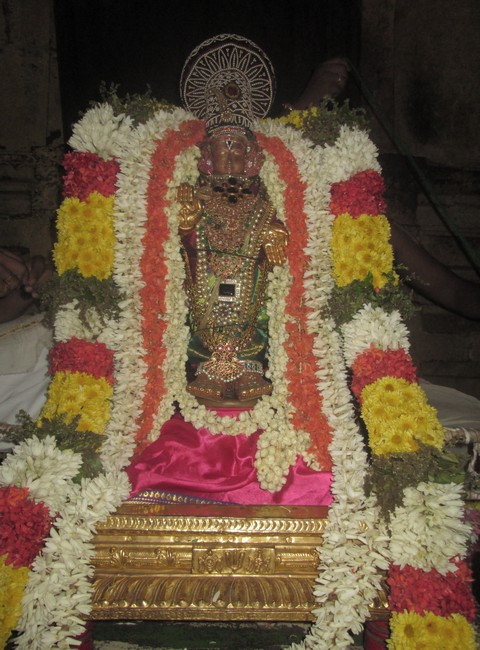 pooviruthavalli thirukachinambigal thiruavathara uthsavam day 102