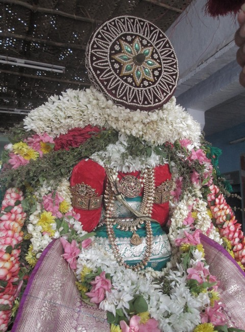 pooviruthavalli thirukachinambigal thiruavathara uthsavam day 106