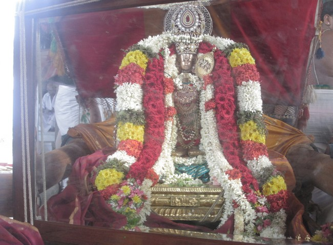 pooviruthavalli thirukachinambigal thiruavathara uthsavam day 108
