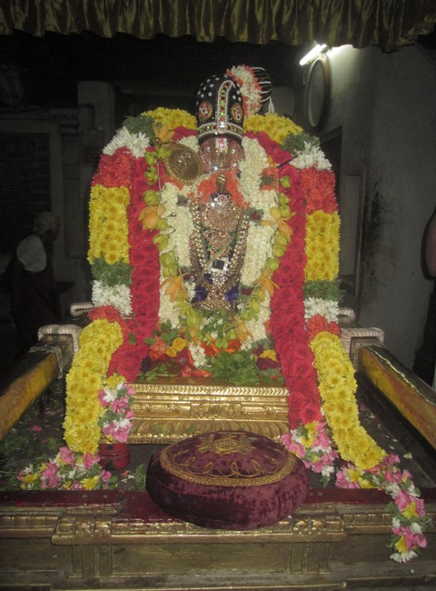 pooviruthavalli thirukachinambigal thiruavathara uthsavam day 81