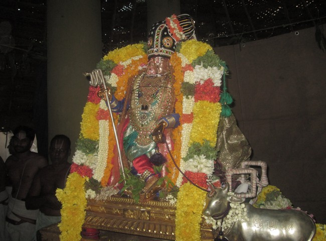 pooviruthavalli thirukachinambigal thiruavathara uthsavam day 813