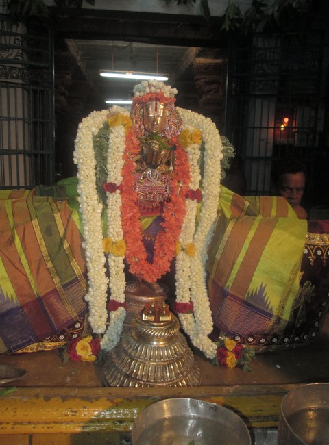 pooviruthavalli thirukachinambigal thiruavathara uthsavam day 816