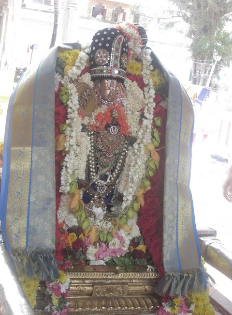 pooviruthavalli thirukachinambigal thiruavathara uthsavam day 85