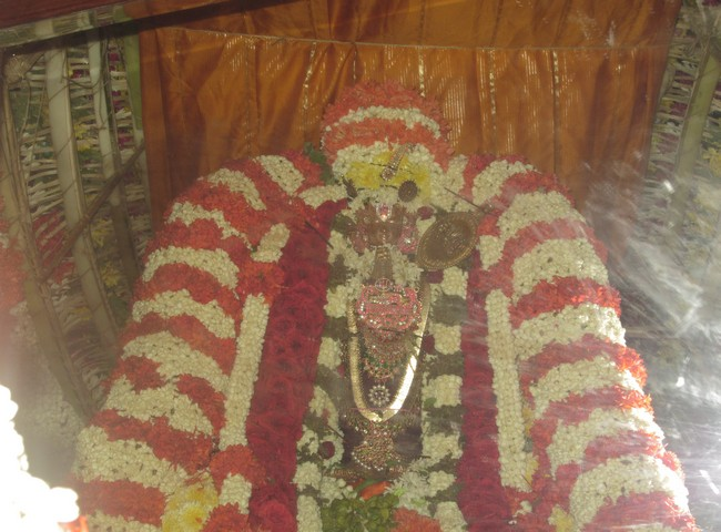 pooviruthavalli thirukachinambigal thiruavathara uthsavam day 910