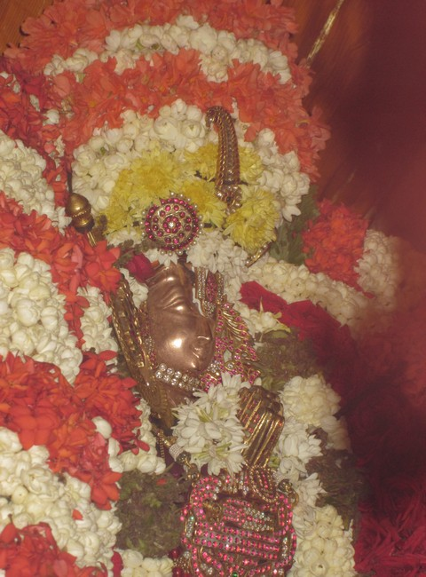 pooviruthavalli thirukachinambigal thiruavathara uthsavam day 911