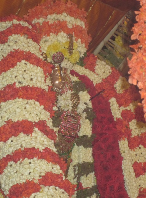 pooviruthavalli thirukachinambigal thiruavathara uthsavam day 917