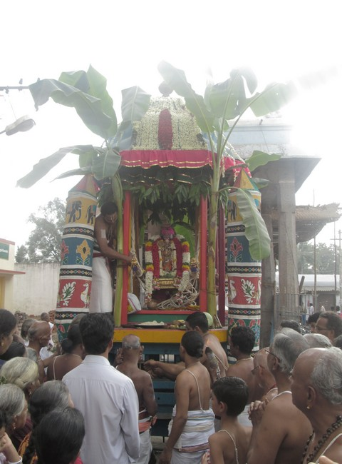 pooviruthavalli thirukachinambigal thiruavathara uthsavam day 92