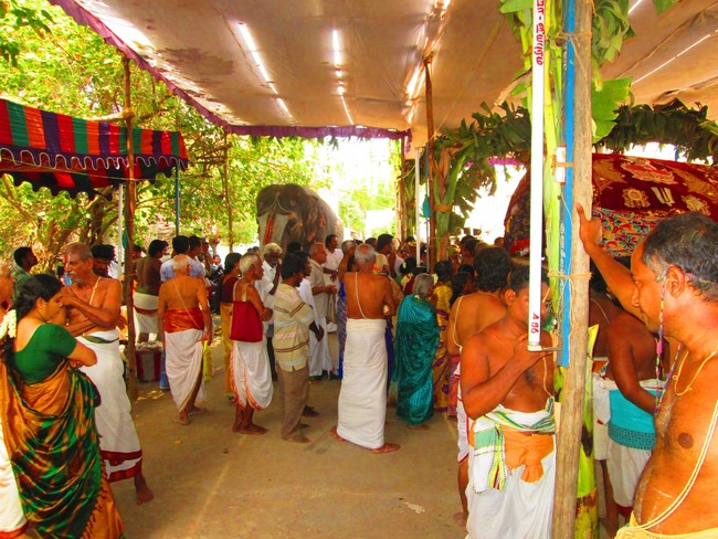 5.00pm to 5.30pm purappadu from jeeyapuram mandapam (6)
