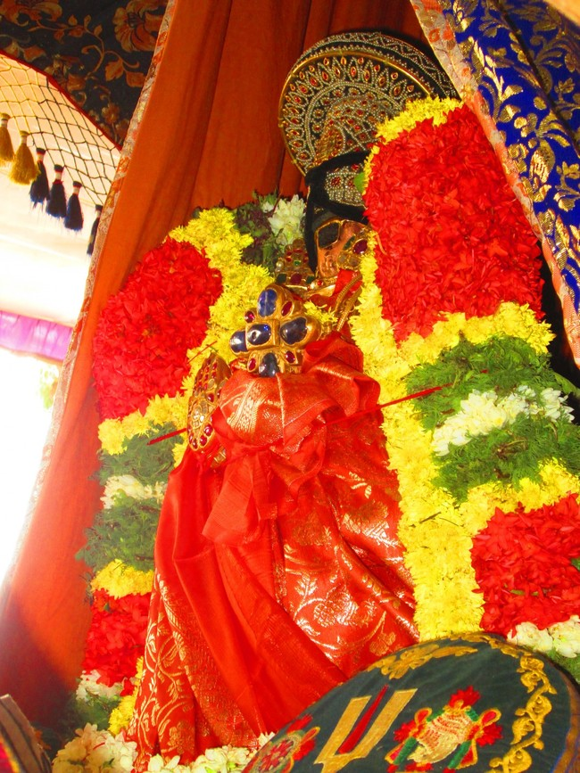 5.00pm to 5.30pm purappadu from jeeyapuram mandapam (8)