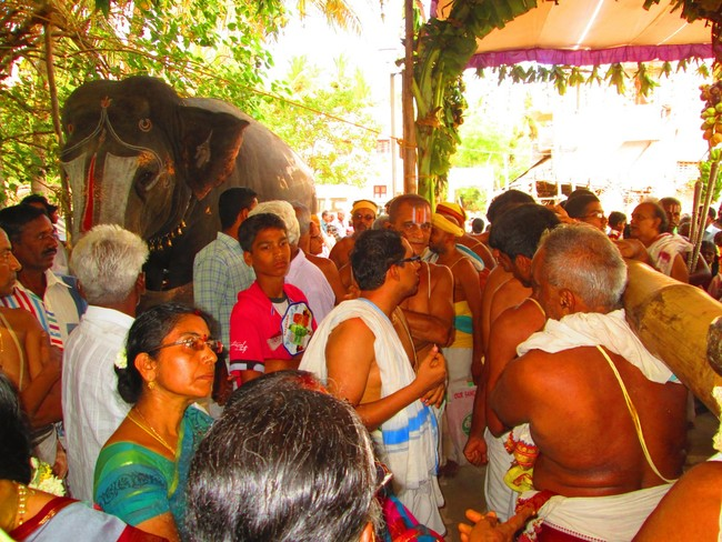 5.00pm to 5.30pm purappadu from jeeyapuram mandapam (9)