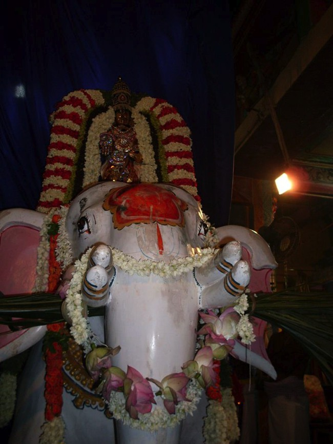 MGR Nagar Avatara Utsavam day 6 eve 2014--01