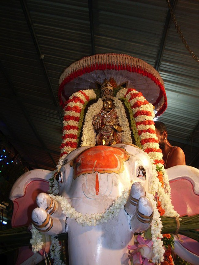 MGR Nagar Avatara Utsavam day 6 eve 2014--07