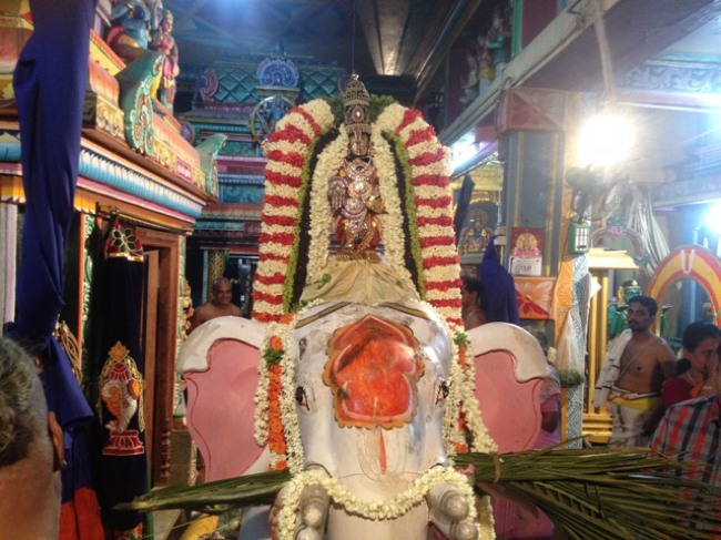 MGR Nagar Avatara Utsavam day 6 eve 2014--09