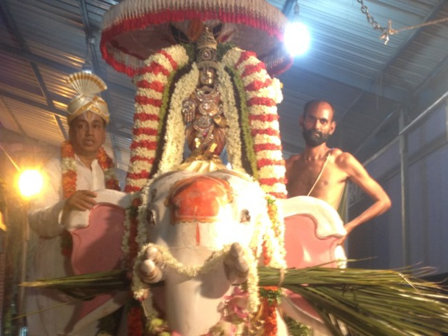 MGR Nagar Avatara Utsavam day 6 eve 2014--13