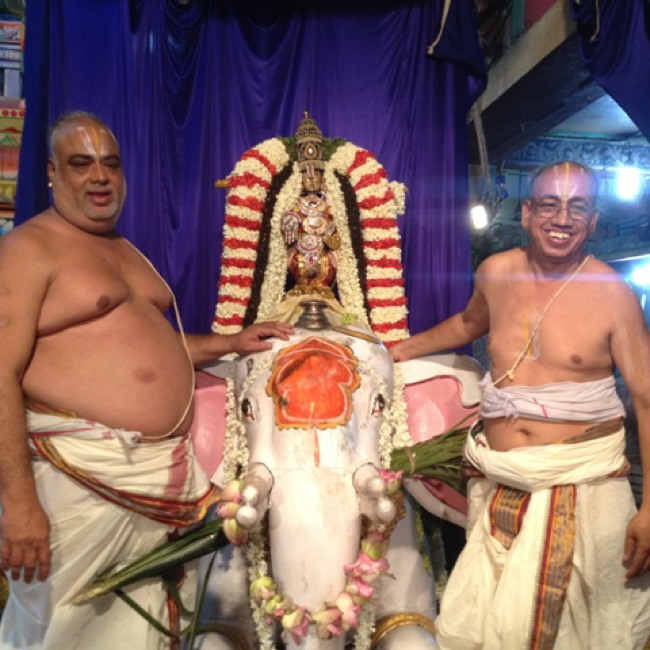 MGR Nagar Avatara Utsavam day 6 eve 2014--15