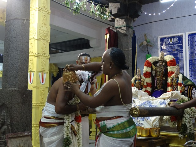 Mylapore SVDD Srinivasa Perumal  May 30,2014 Vaigasi Maasam Bhrahmotsavam Dwajarohanam and DAY 1 morning CHAPARAM 18
