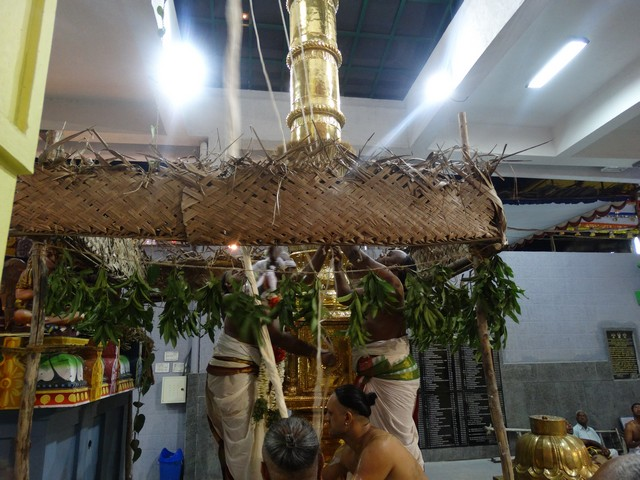 Mylapore SVDD Srinivasa Perumal  May 30,2014 Vaigasi Maasam Bhrahmotsavam Dwajarohanam and DAY 1 morning CHAPARAM 26