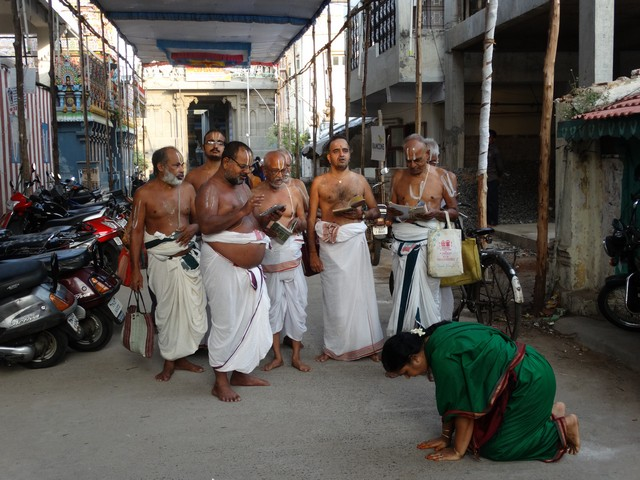 Mylapore SVDD Srinivasa Perumal  May 30,2014 Vaigasi Maasam Bhrahmotsavam Dwajarohanam and DAY 1 morning CHAPARAM 34