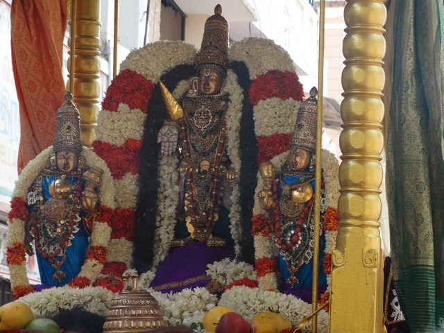 Mylapore SVDD Srinivasa Perumal  May 30,2014 Vaigasi Maasam Bhrahmotsavam Dwajarohanam and DAY 1 morning CHAPARAM 47