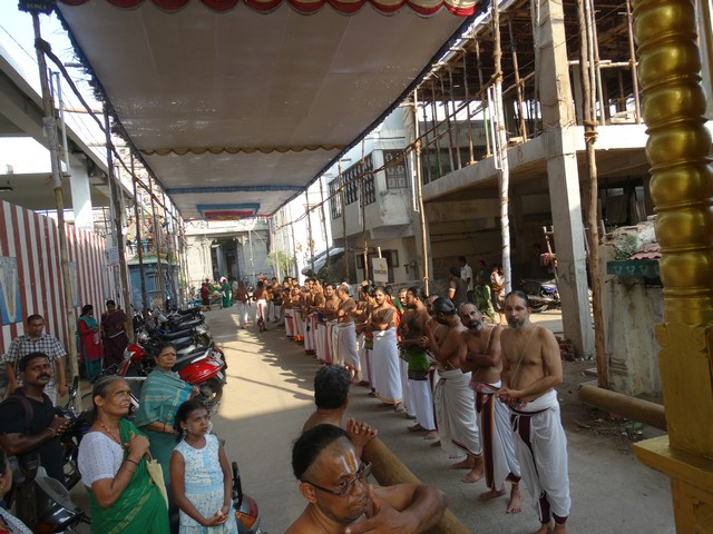 Mylapore SVDD Srinivasa Perumal  May 30,2014 Vaigasi Maasam Bhrahmotsavam Dwajarohanam and DAY 1 morning CHAPARAM 48
