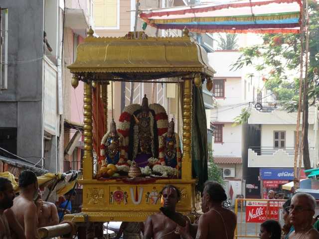 Mylapore SVDD Srinivasa Perumal  May 30,2014 Vaigasi Maasam Bhrahmotsavam Dwajarohanam and DAY 1 morning CHAPARAM 50