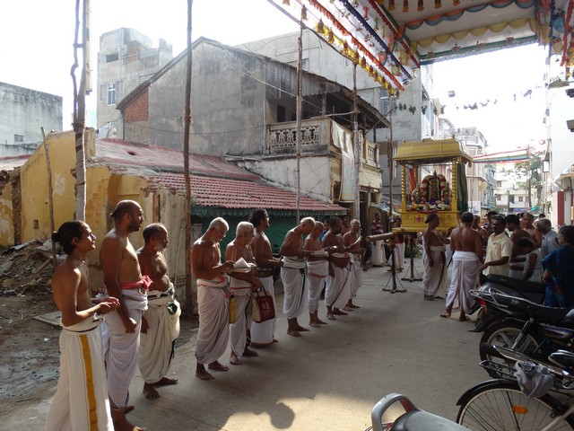 Mylapore SVDD Srinivasa Perumal  May 30,2014 Vaigasi Maasam Bhrahmotsavam Dwajarohanam and DAY 1 morning CHAPARAM 51