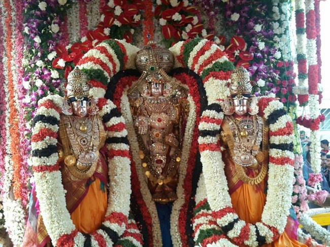 Aanivara Asthanam At Tirumala Sri Malayappaswamy Temple11