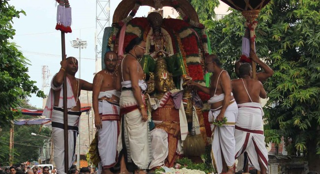 Thiruvallikeni Thelliasingar Brahmotsavam day 3 2014 6