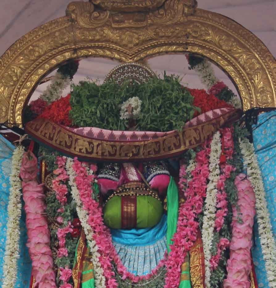 Thiruvallikeni Thelliasingar Brahmotsavam day 3 2014 7