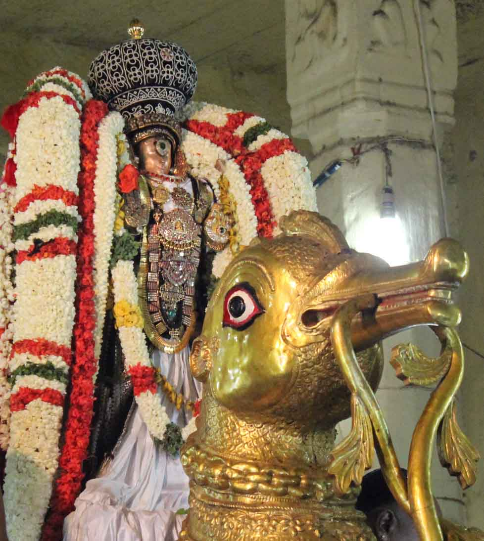 Thiruvallikeni Thelliasingar Brahmotsavam day 3 Hamsa Vahanam 2014 7