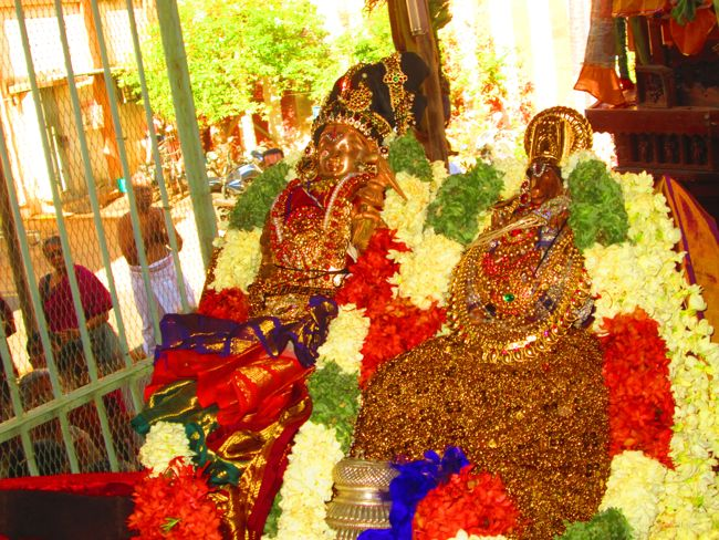 aandal thiruther poundrigapuram (92)