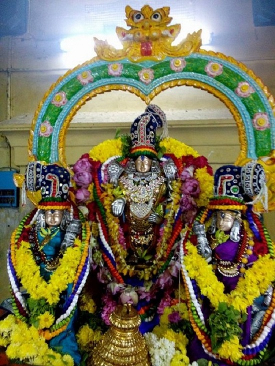 Egmore Sri Srinivasa Perumal Temple ThiruPavithrothsavam1