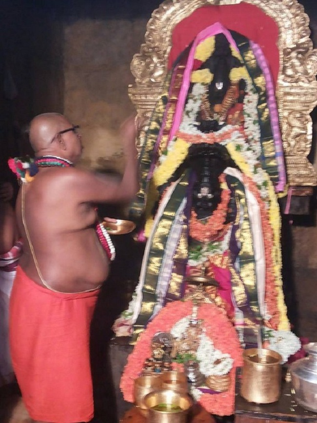 HH 46th Srimath Azhagiyasingar Mangalasasanam And Sri Malolan Serthi Utsavam At Upper Ahobilam60