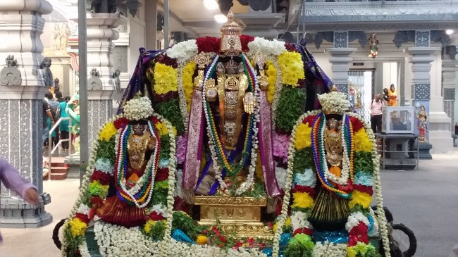 Singapore Srinivasa Perumal Temple Pavithrotsavam 2014--0021