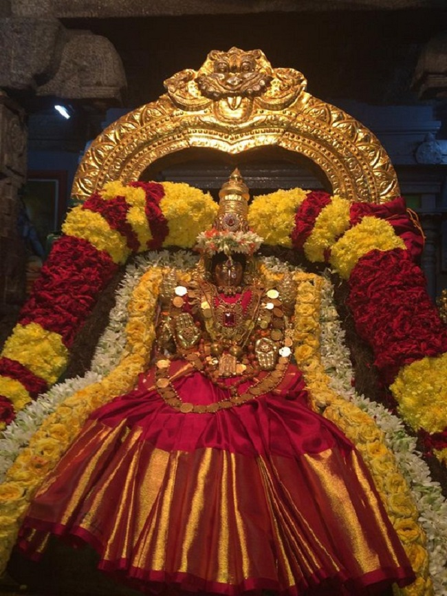 Thiruchanoor Sri Padmavathi Thayar temple Navarathiri Utsavam Commences1