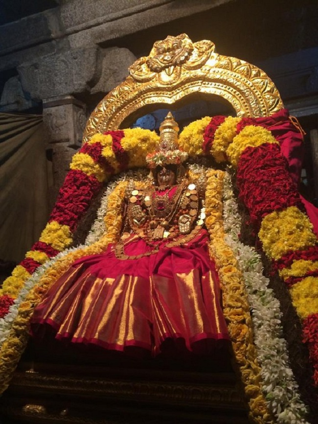 Thiruchanoor Sri Padmavathi Thayar temple Navarathiri Utsavam Commences3