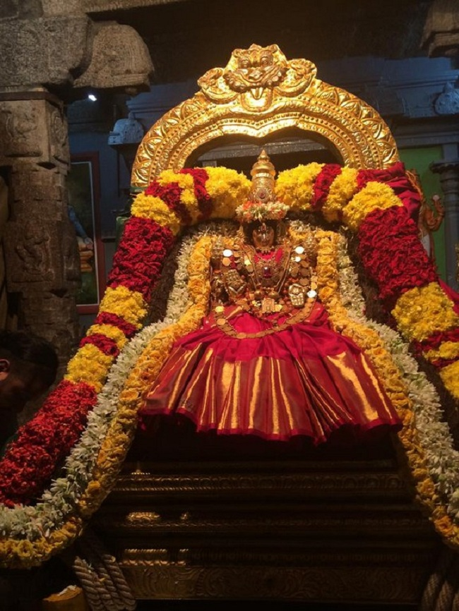 Thiruchanoor Sri Padmavathi Thayar temple Navarathiri Utsavam Commences6
