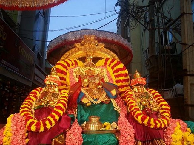 Tirupathi Sri Govindaraja Swamy Temple ThiruPavithrothsavam4
