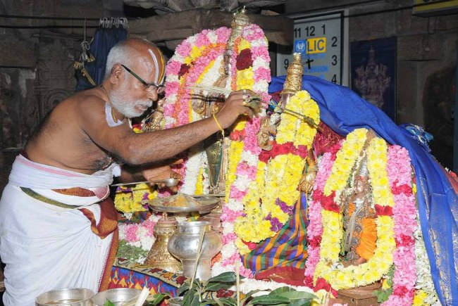 Swathi Sudharshana Homam at Lower ahobilam 2014 01