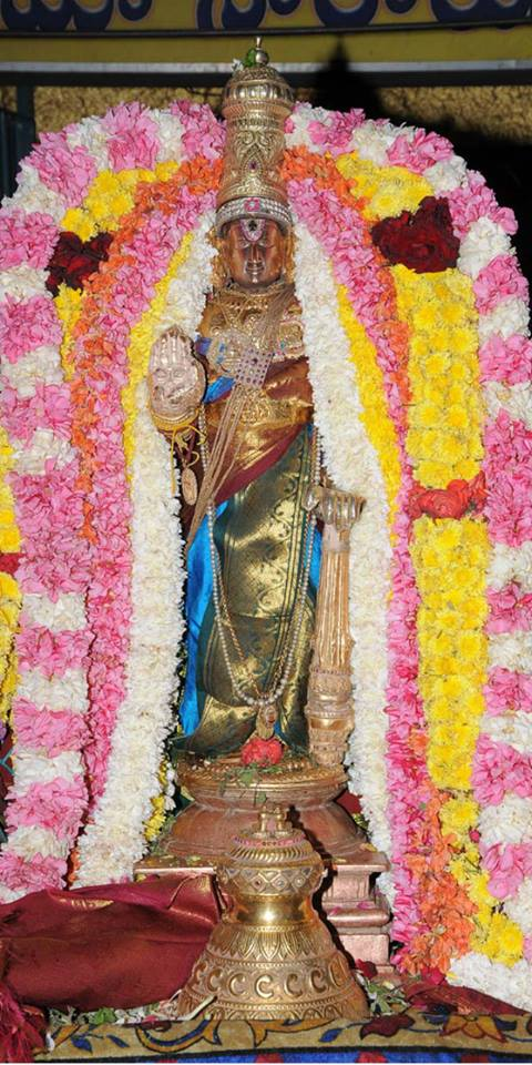 Swathi Sudharshana Homam at Lower ahobilam 2014 06